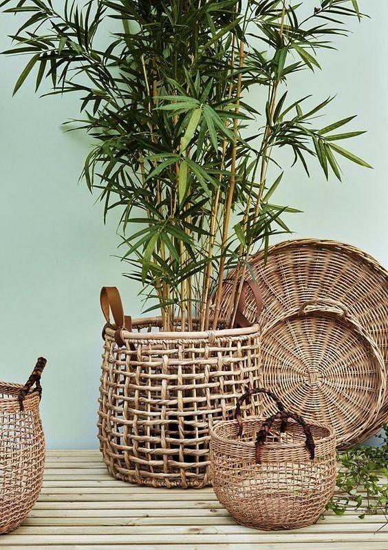 De trend botanisch wonen floreert ten top dankzij het combineren van planten met rotan accessoires. (Foto: Pinterest)